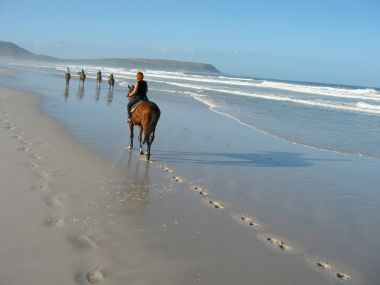Kalk Bay horse riding